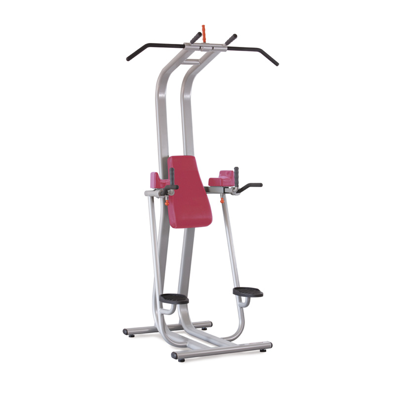 CHIN AND DIP - COMMERCIAL GYM EQUIPMENT