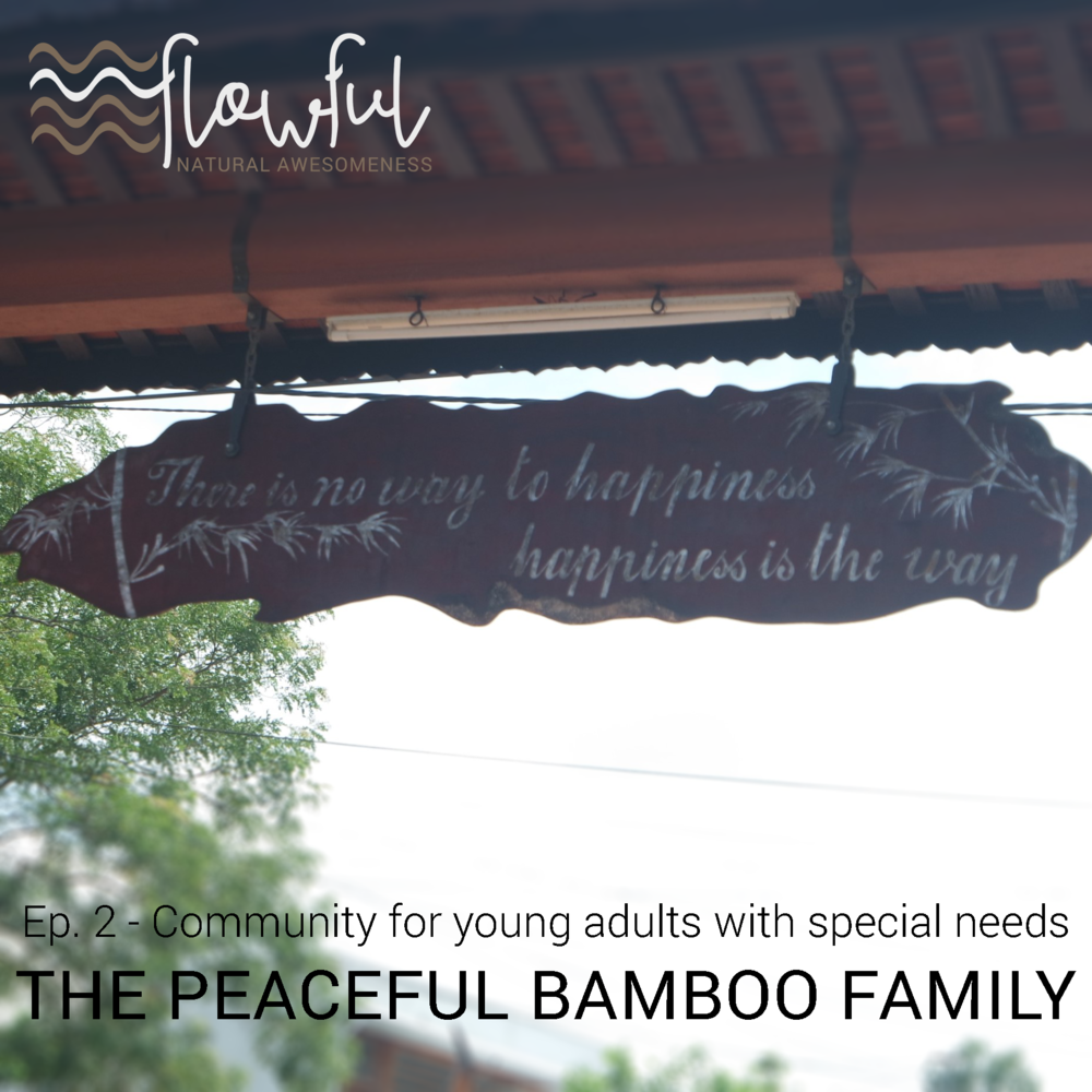 The Peaceful Bamboo Family