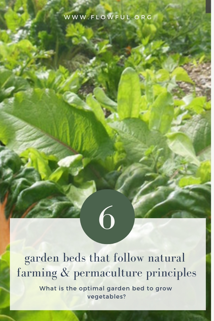 6 garden beds follwing natural farming and permaculture principles