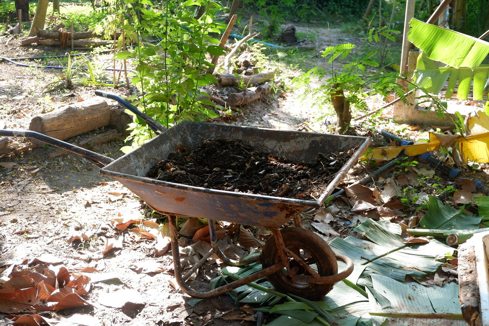 Turning problems (waste) into solutions (compost)