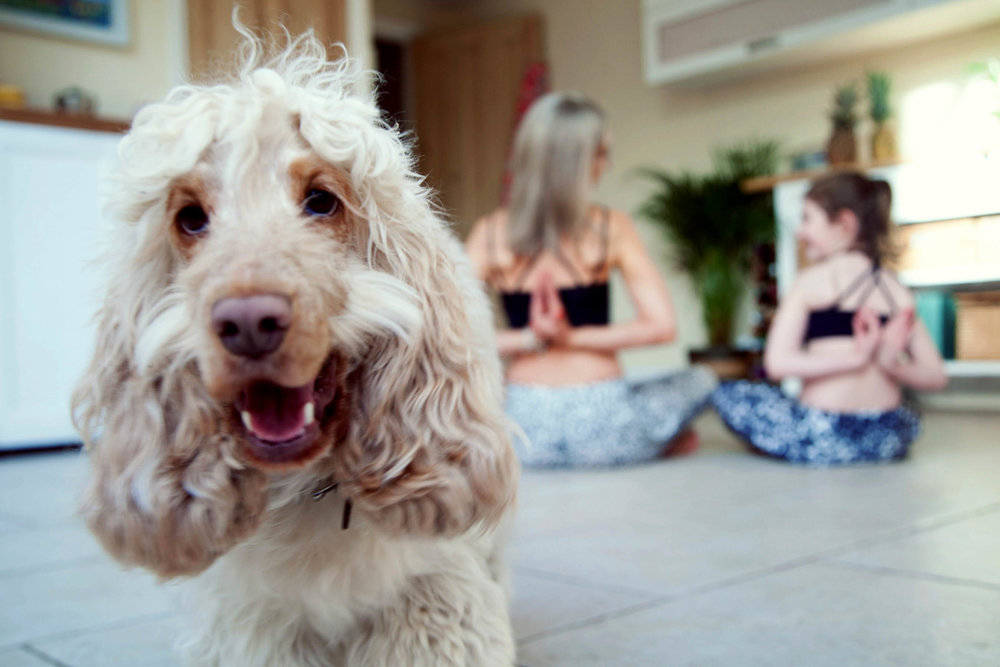 Online yoga for mums.