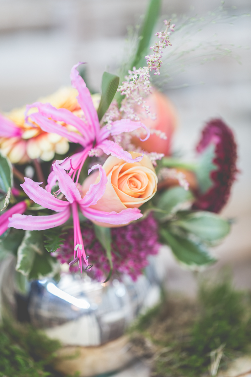 Flowers at Boyne Hill
