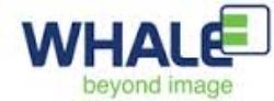 Whale_logo.jpg