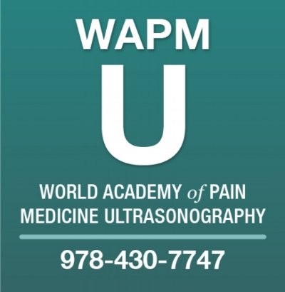 World Academy of Pain Medicine Ultrasonography