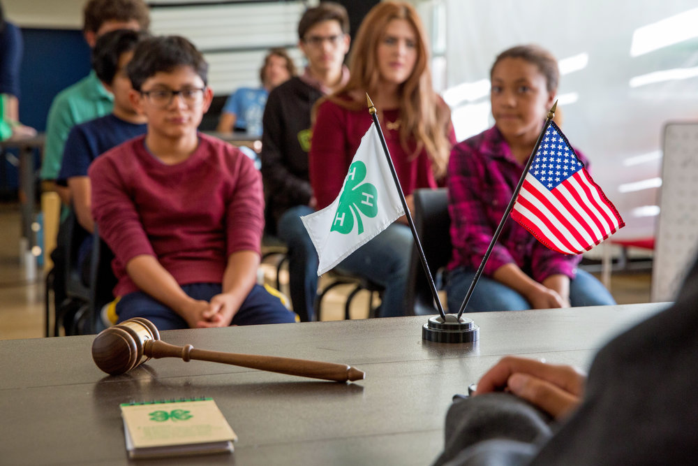 Washington County 4-H Council