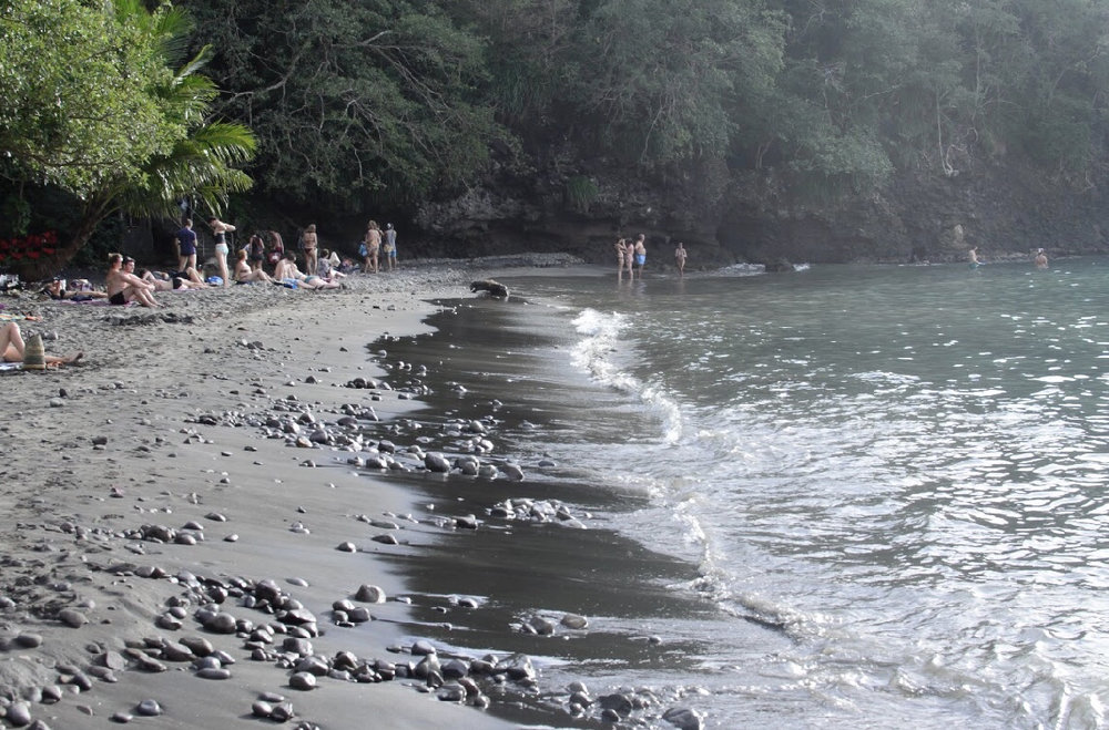 The black sand glistens in the sunlight and is amazing for your skin.