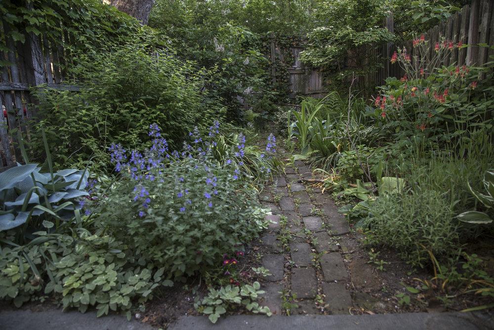 Garden-7720.jpg
