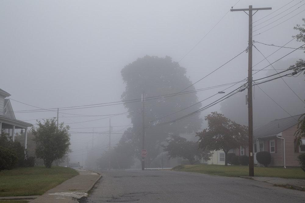 Fog-2740.jpg