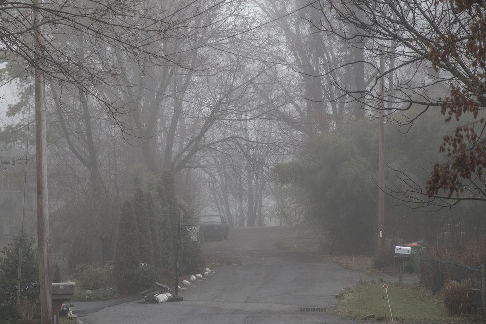 Fog-8738.jpg