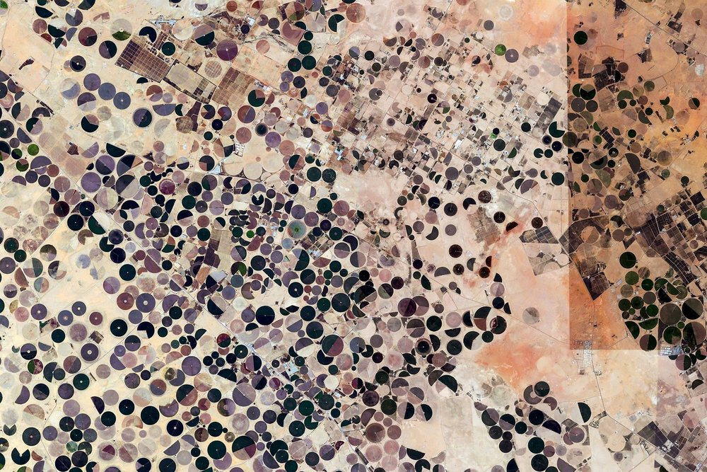 Matteo Pasin, Sedentry/Segmentary, Middle East, 2016 A series of satellite images representing the environment of a segmentary animal spread over the world, a sort of cartography of the anthropsophere.
