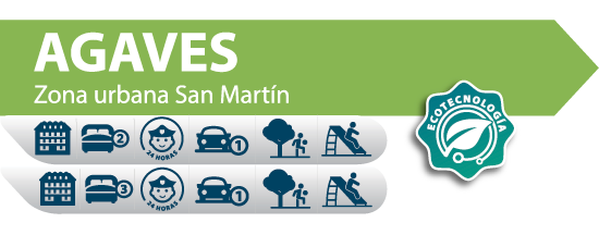 Agaves San Martin Casas auge