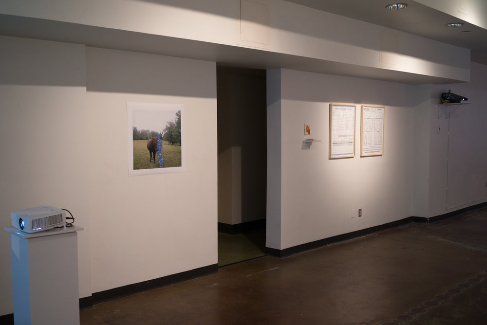 Installation view of short wall in main gallery