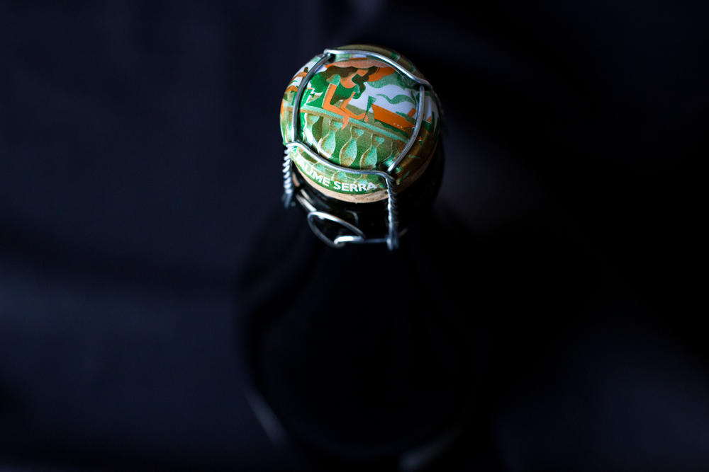 Bottle-Bitches-Review-of-Cava-Heretat-El-Padruell-NV