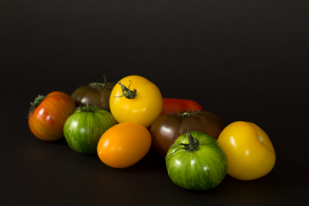 Ummm-can-we-just-look-at-these-pretty-tomatoes.png
