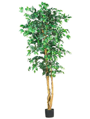 Indoor Faux Plant
