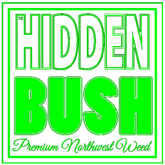 The Hidden Bush