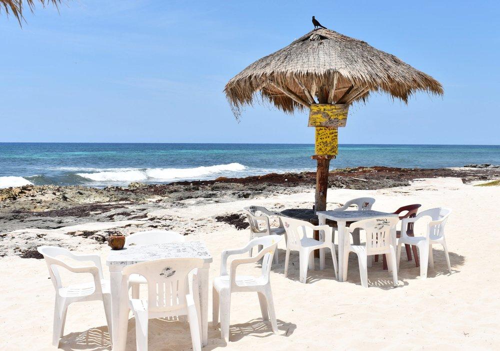 Primeira parada em Cozumel foi no Rastas Bar, boa comida, cerveja gelada e vista linda!