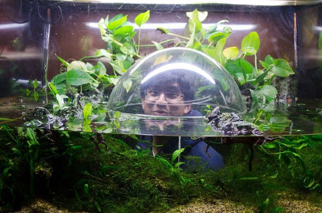 Vancouver Adventures - Vancouver Aquarium