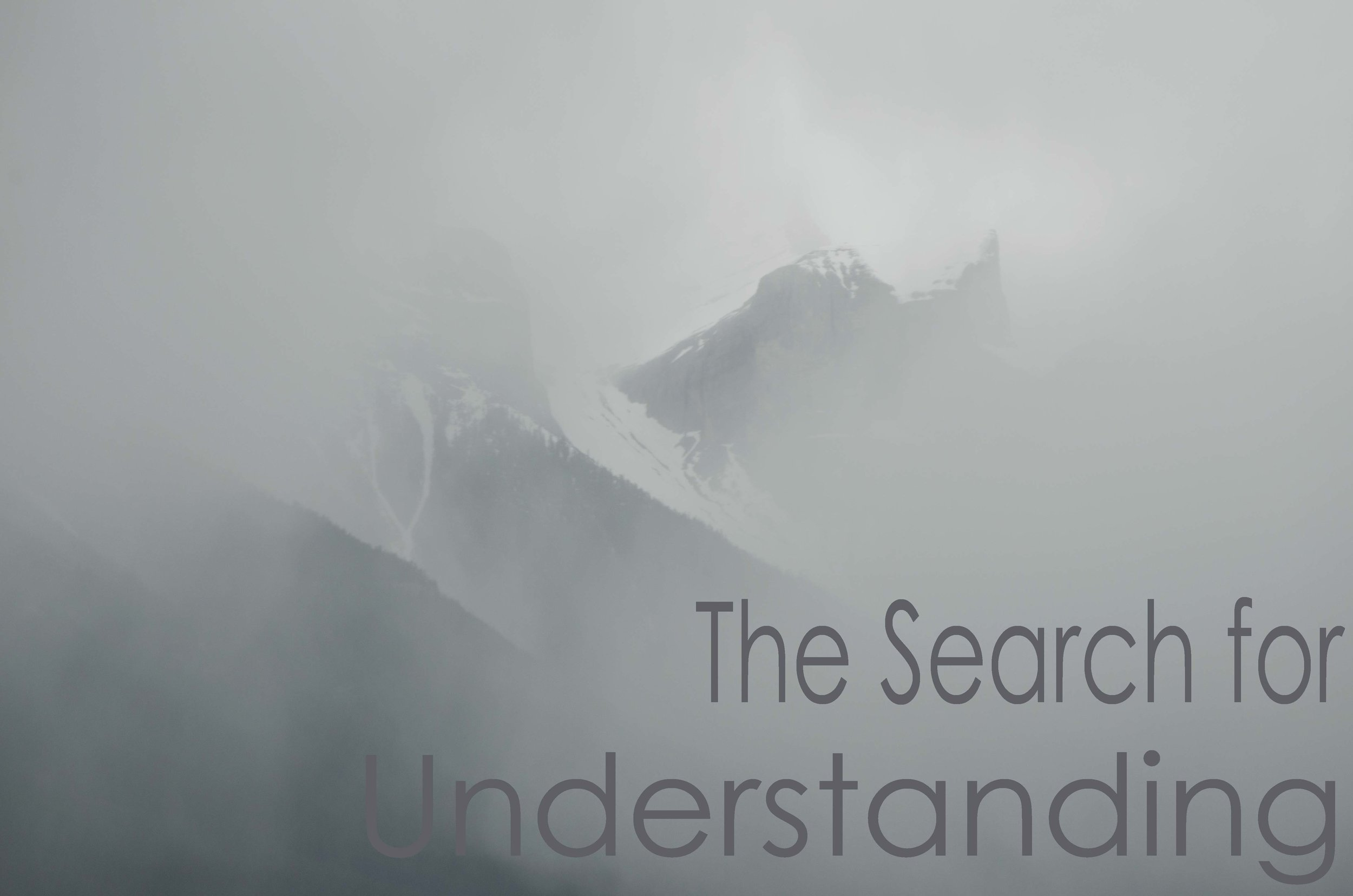 The-Search-for-Understanding