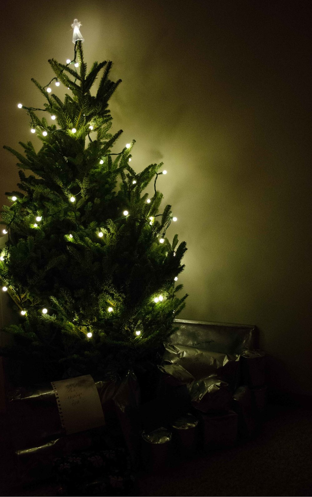Oh Christmas Tree — Clutter Box
