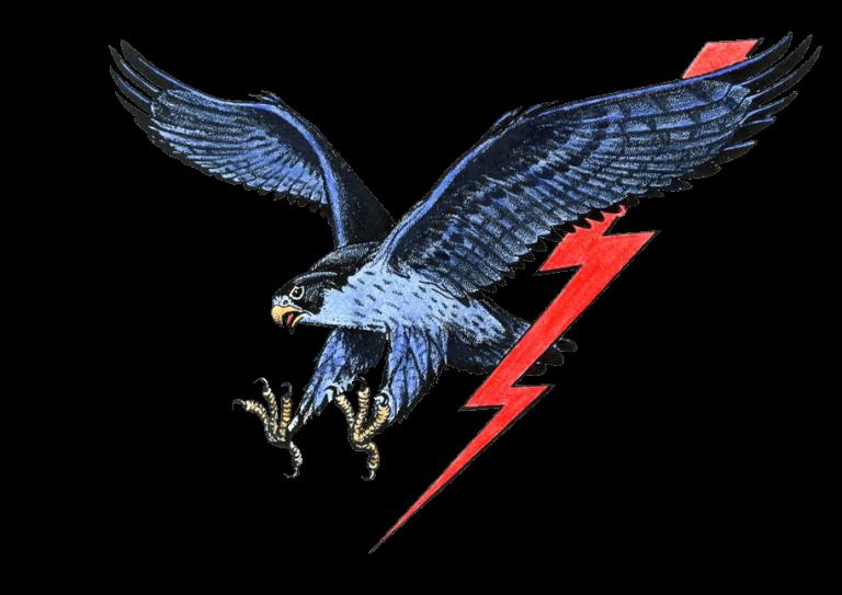 MW-falcon-logo.png