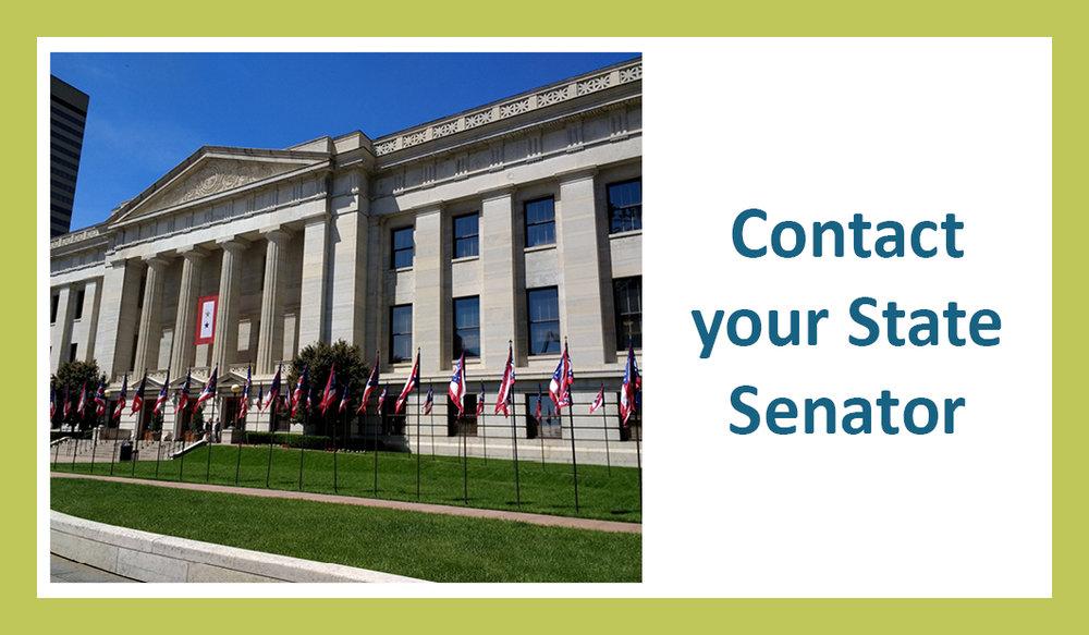 State Senator tile.jpg