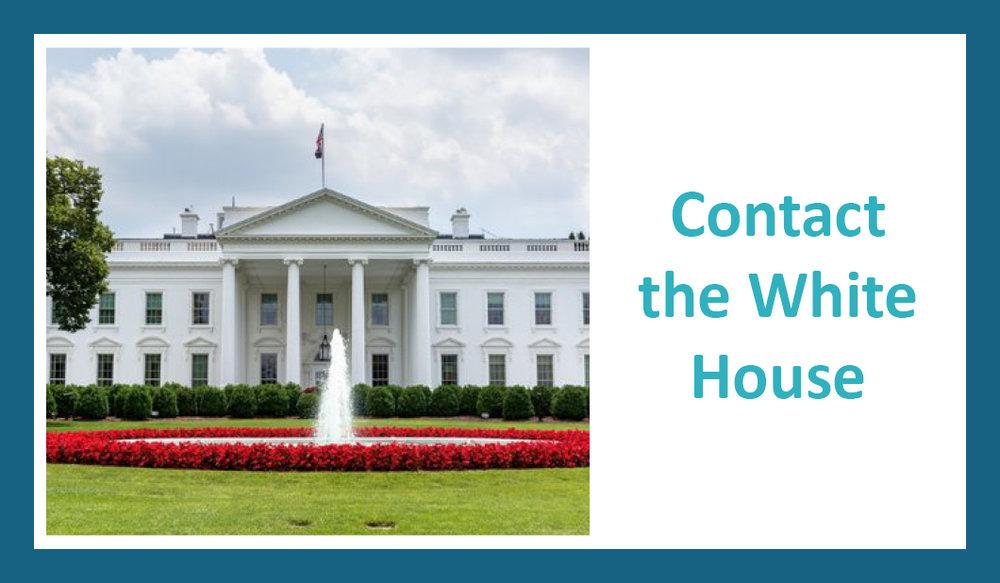 White House tile.jpg