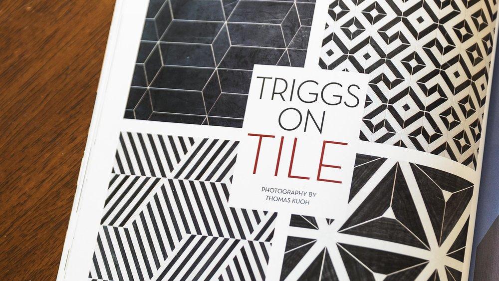 TinekeTriggs-Banner.jpg