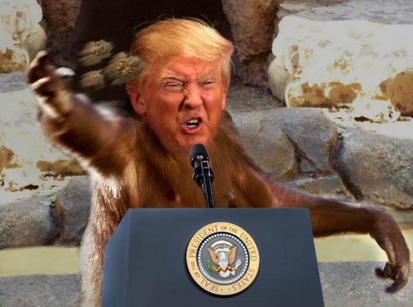 Trump Throwing Feces Final.jpg
