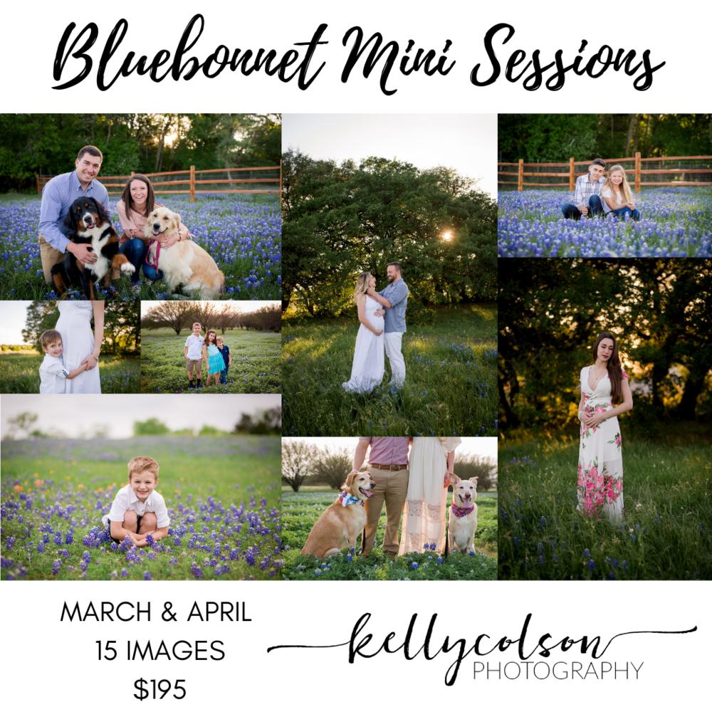 Bluebonnet Mini Sessions.png