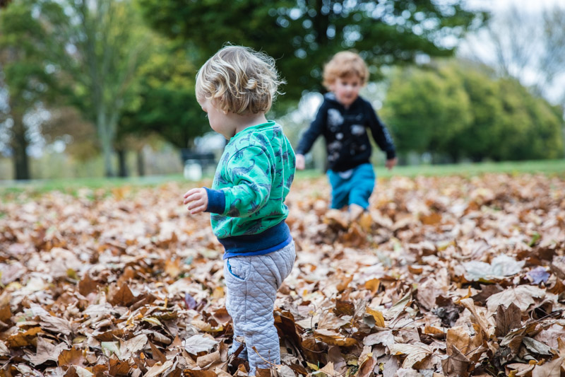 Boys in the leaves
