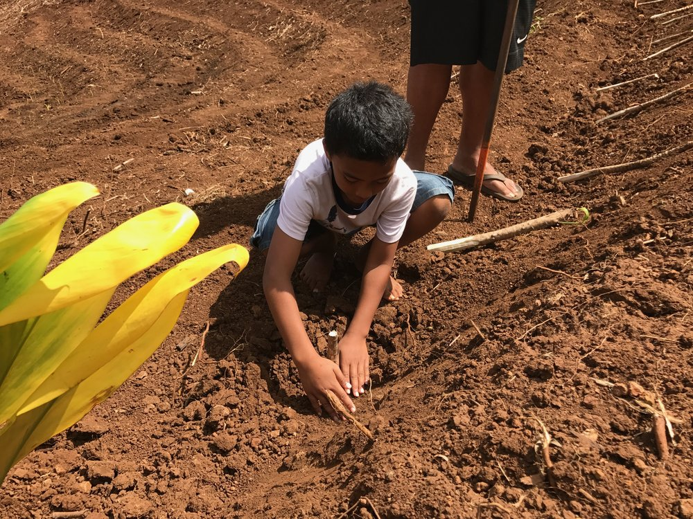 Brandon's nephew helping him plant.