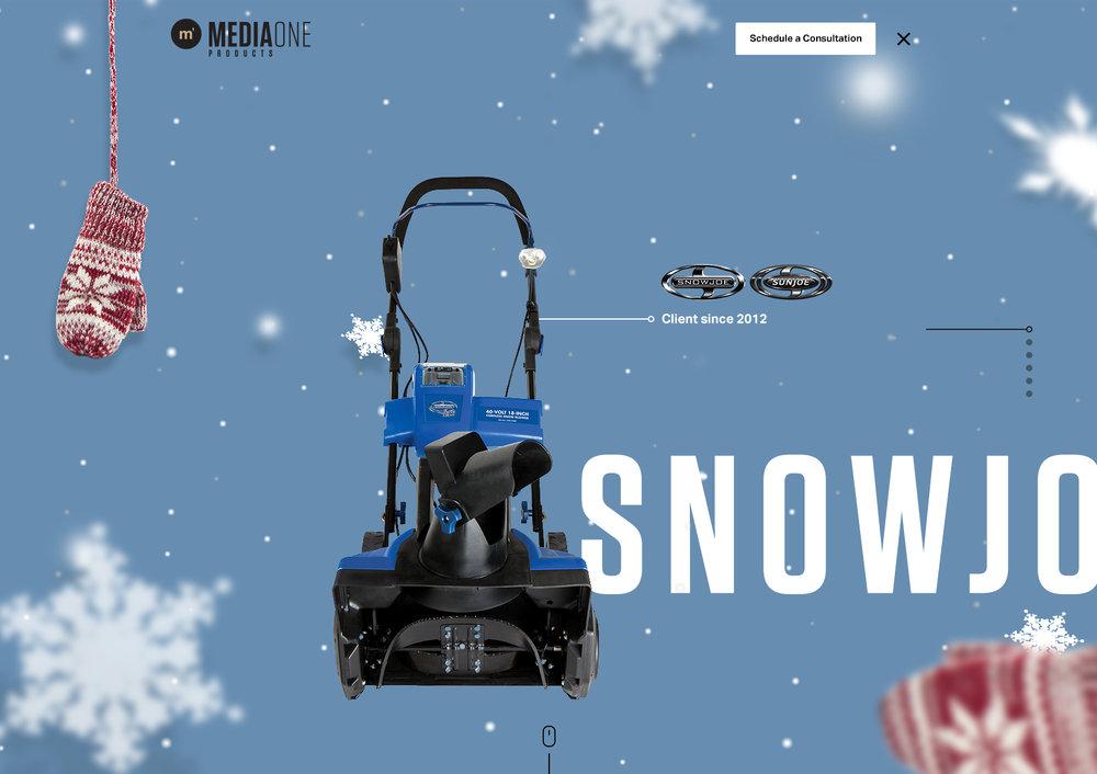 m1p-snowsunjoe-1.jpg