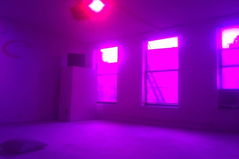 dream house -