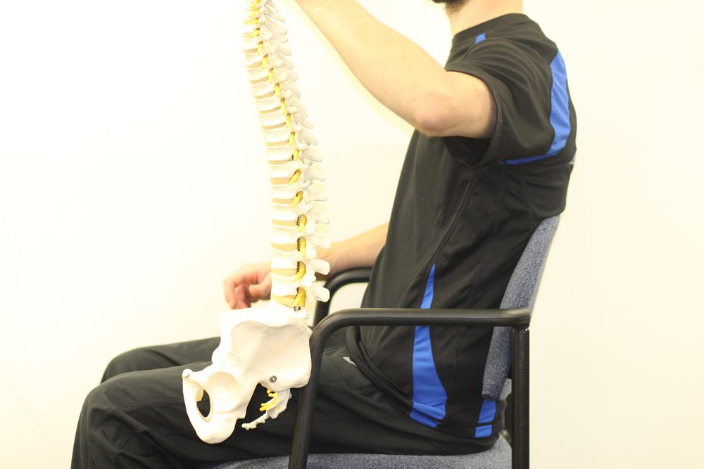 Notice that the chair supports the spine, but typically within the flexed lumbar position that consumers like to default to