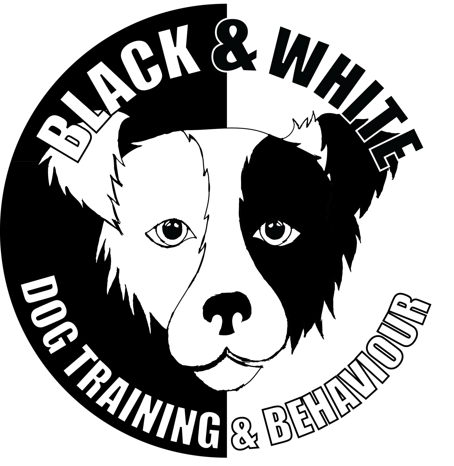 Black & White Dog Training and Behaviour