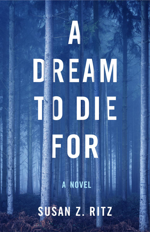 A dream to die for cover