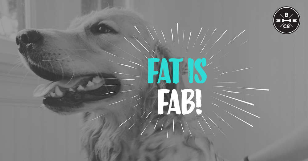 21. Fat Is Fab.png