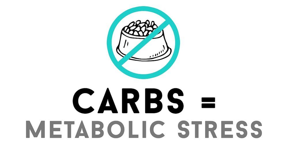 carbs-equal-metabolic-stress