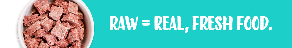 raw-is-real-and-fresh-food