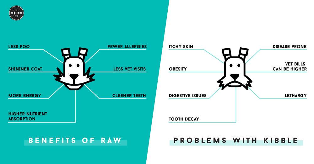 kibble-versus-raw