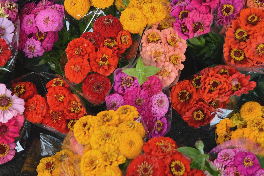 discover-deal-deal-market-flowers-1.jpg