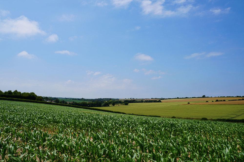 discover-deal-solleys-farm2.jpg