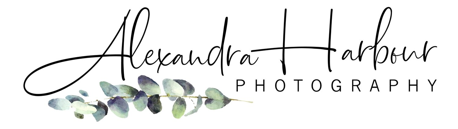 Alexandra Harbour Photography