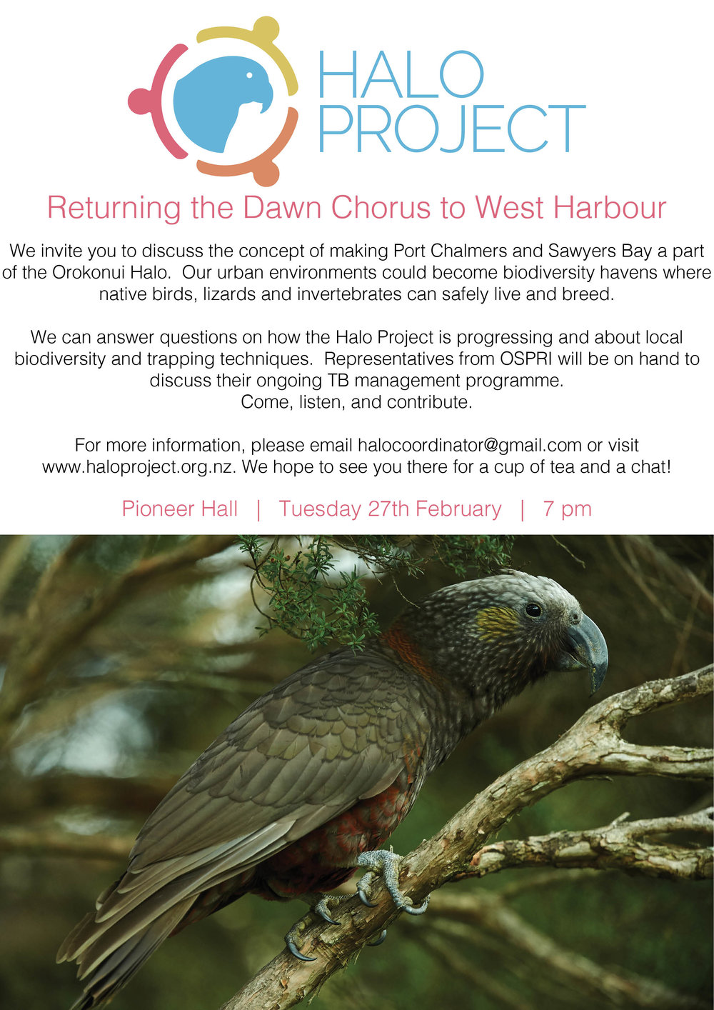 Returning the Dawn Chorus Feb 2018.jpg