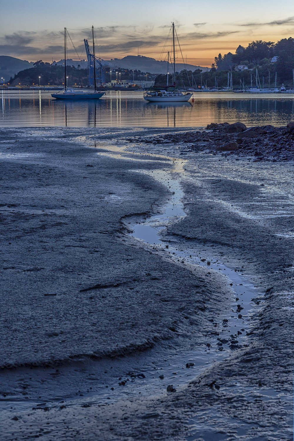 Mudflats at Careys Bay by Andy Tompson