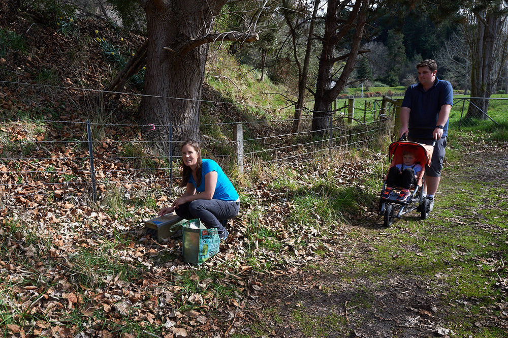 Family volunteers to check traps