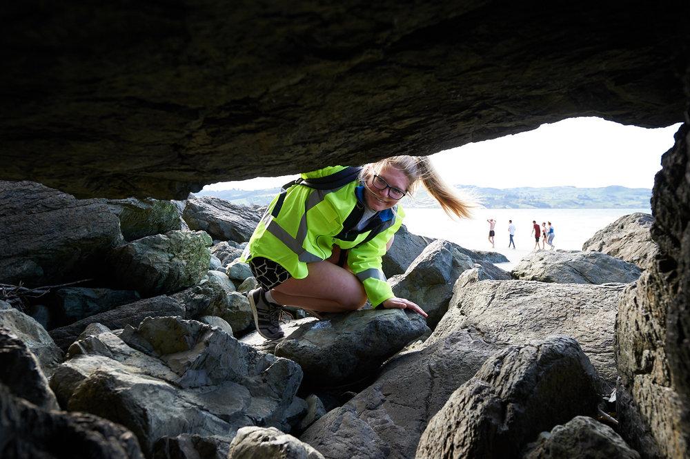 Volunteers looks for penguin nesting sites
