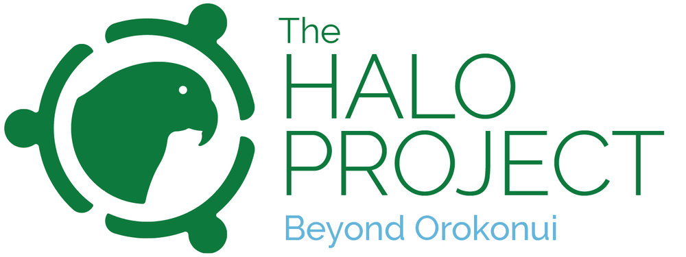 Halo logo green and blue final.jpg