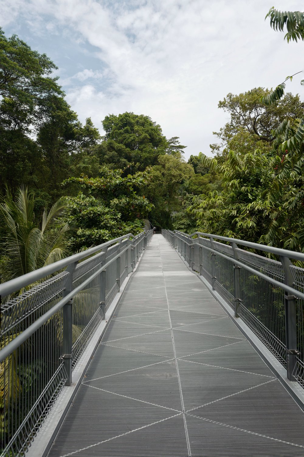 A bridge on the    Southern Ridges